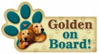 Golden On Board Magnet